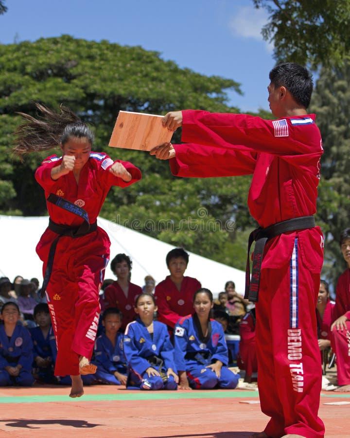 Taekwondo-Mädchen lizenzfreie stockbilder