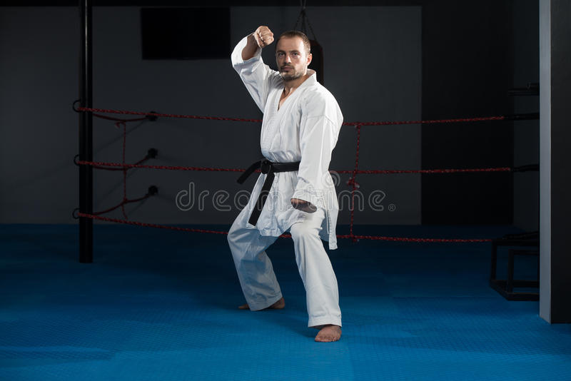 Taekwondo Myśliwska poza obrazy royalty free