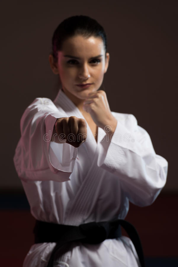 Taekwondo Myśliwska poza obraz stock