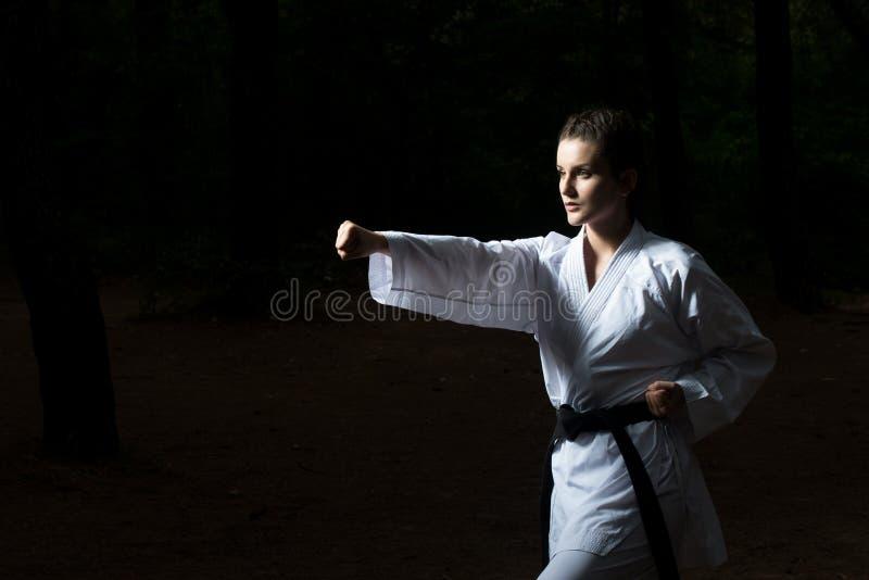 Taekwondo Myśliwska poza przy parkiem fotografia stock