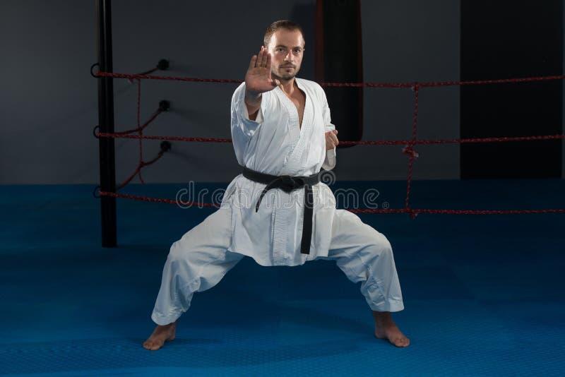 Taekwondo Myśliwski ekspert Z walki postawą obraz stock