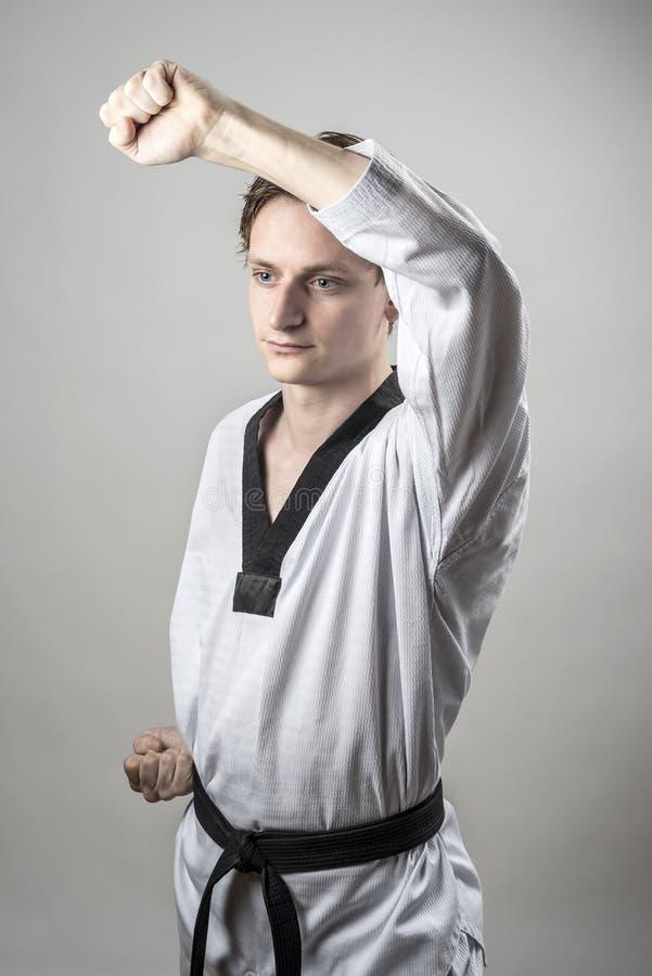 Taekwondo-Verteidigungsblock Lizenzfreie Stockbilder
