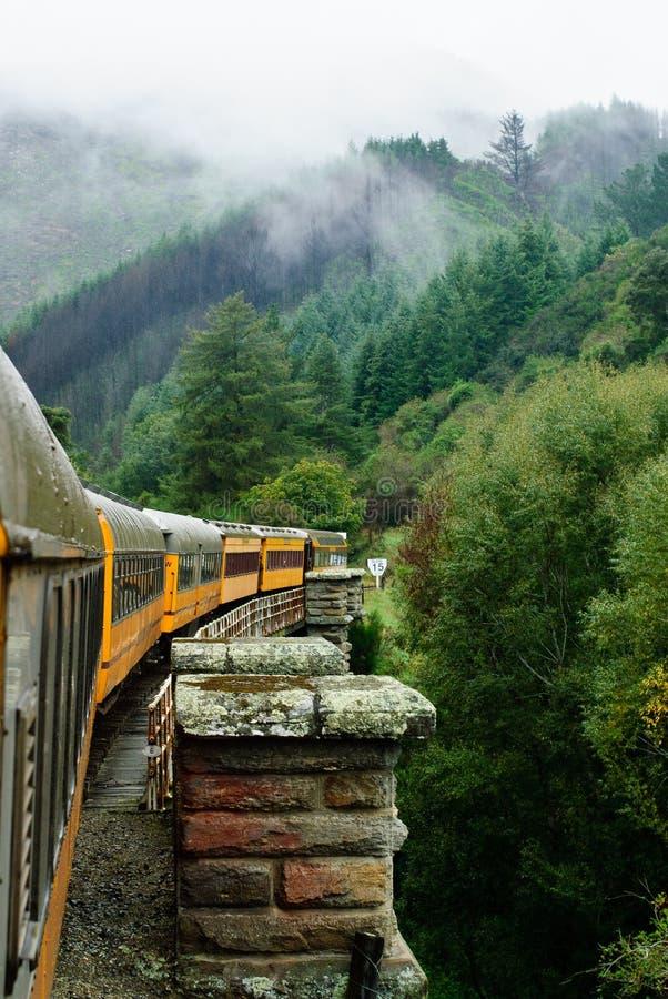 taeri railway gorge стоковое фото