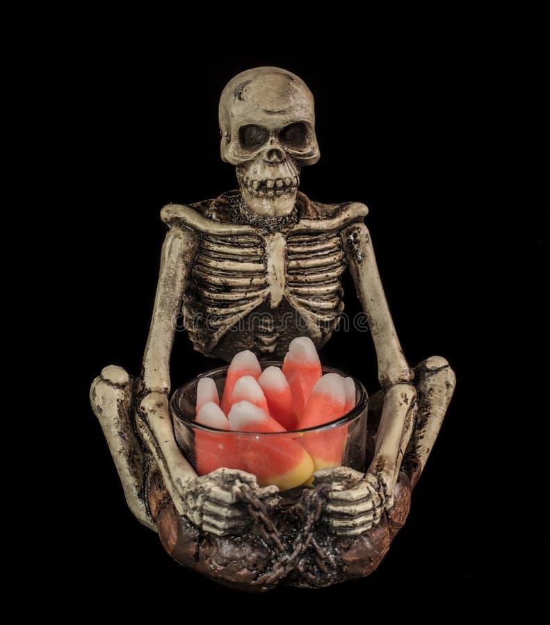 Tag des toten Skeleton Angebots lizenzfreies stockbild