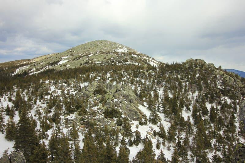 Taganai国家公园 Kruglitsa山1178 m 库存图片