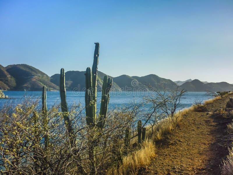 Taganga哥伦比亚海湾的风景  库存图片