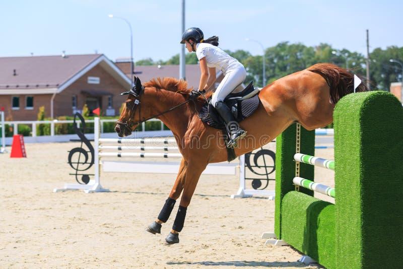 TAGANROG, DON region, SIERPIEŃ 6, 2017: Rywalizacje w equestrian sporcie, oddanym dzień wyzwolenie Neklinov obrazy royalty free