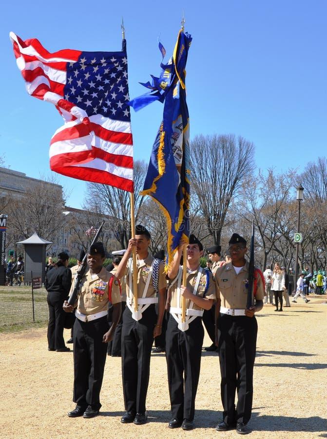 Tagesparade Str.-Patricks In Washington, Gleichstrom ...