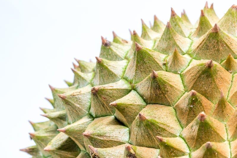 Taggar för slut upp till av durianen arkivbild