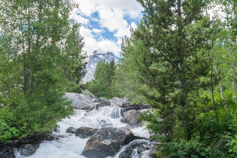 Taggart Creek, Wyoming fotografía de archivo libre de regalías