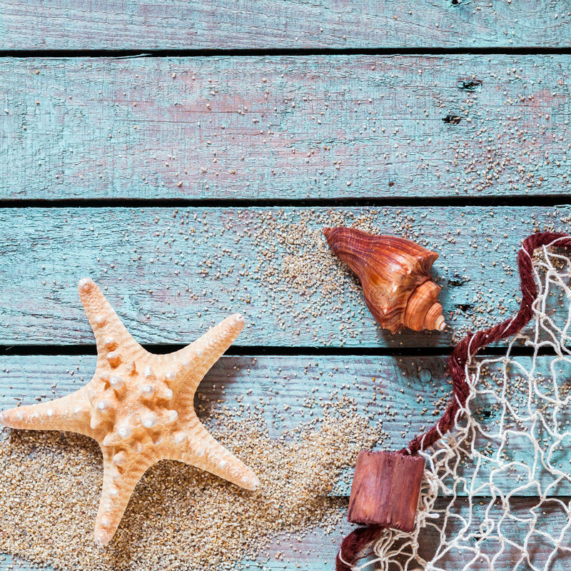 Taggig sjöstjärna och trumpetsnäcka med fisknät arkivbilder