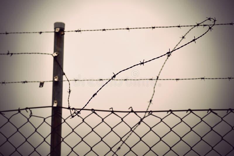 Taggtråd och staket för chain sammanlänkning royaltyfri foto