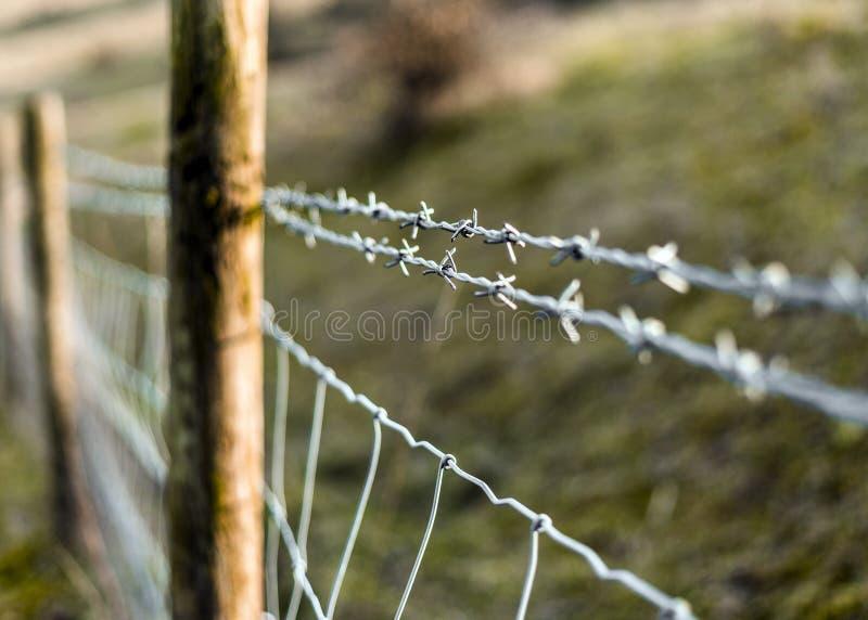 Taggtrådstaket på en privat egenskap royaltyfri bild