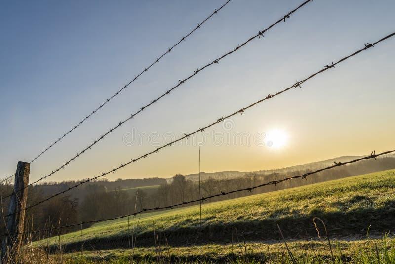 Taggtrådstaket på soluppgång royaltyfri fotografi