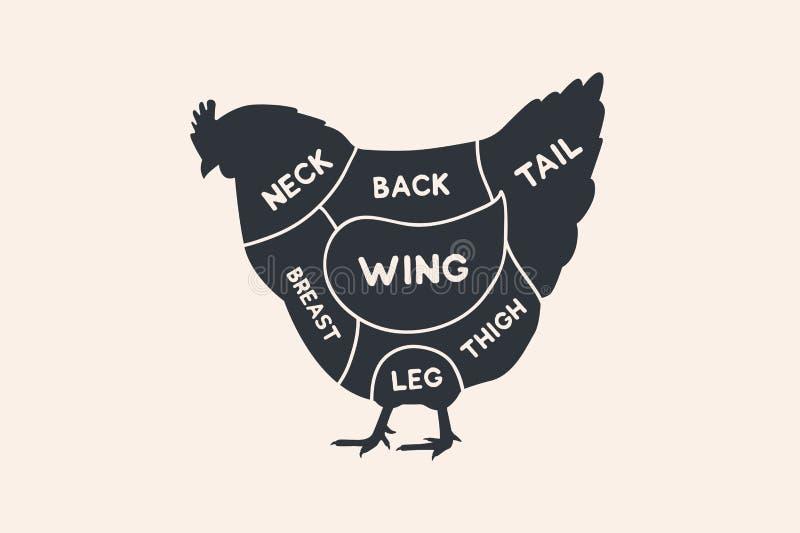 Tagli del pollo Diagrammi per di macelleria Schema del pollo illustrazione di stock