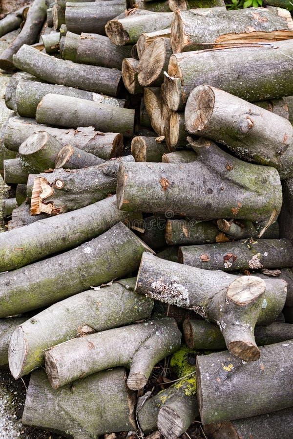 Tagli di recente la legna da ardere cucita con punti metallici immagini stock libere da diritti