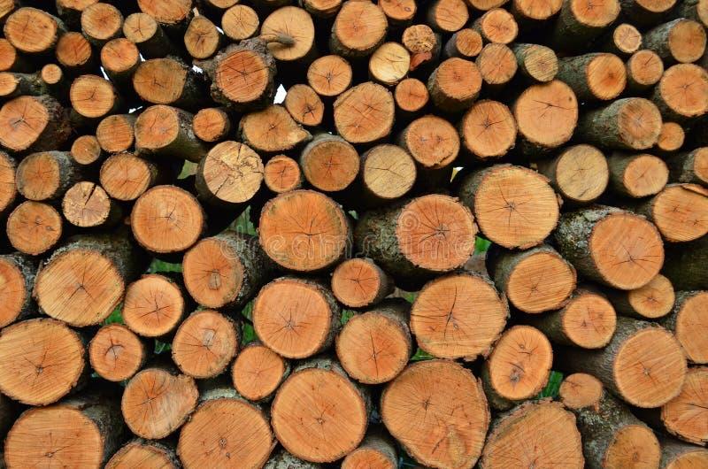 Tagli ed impilato i ceppi della legna da ardere immagine stock libera da diritti