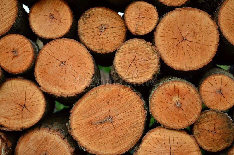 Tagli ed impilato i ceppi della legna da ardere immagine stock