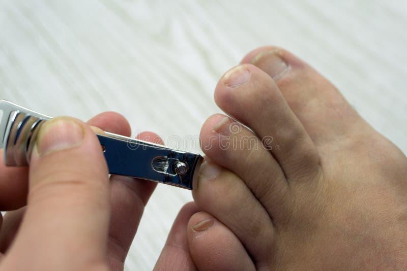 Tagli il bianco neonato del trattamento della pelle di pedicure delle unghie del piede fotografie stock
