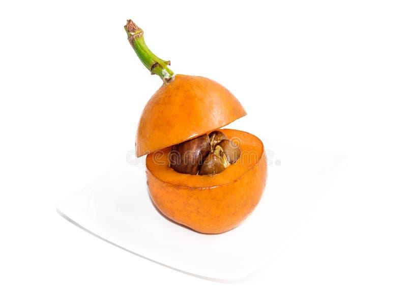 Tagli la frutta del loquat sul piccolo piatto bianco sopra bianco immagine stock libera da diritti