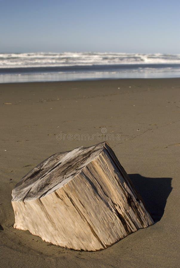 Tagli la spiaggia di inizio attività fotografia stock