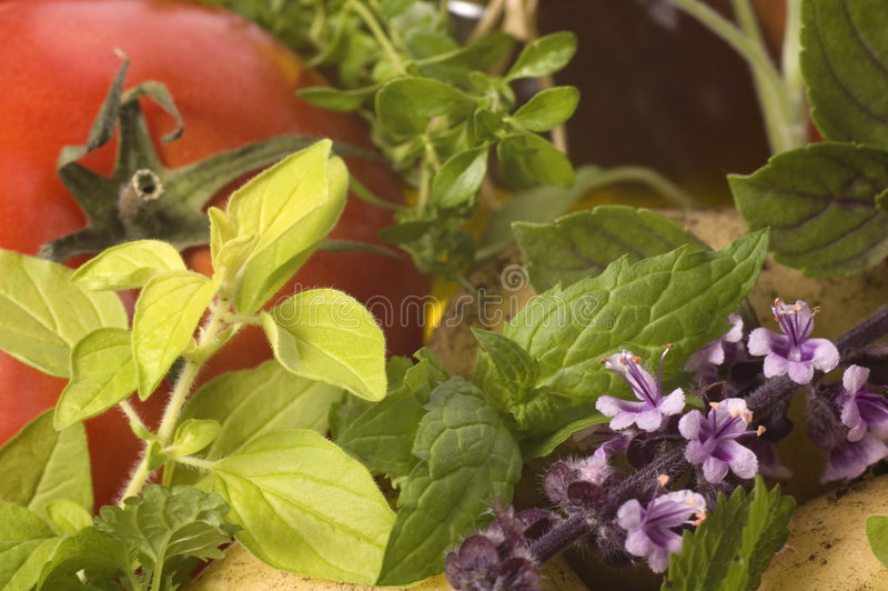 Tagli le erbe e le verdure fresche fotografia stock