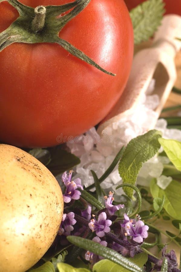 Tagli le erbe e le verdure fresche immagini stock libere da diritti