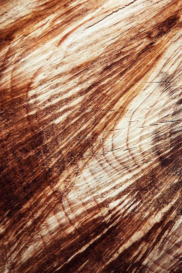Tagli le scanalature di legno fotografia stock
