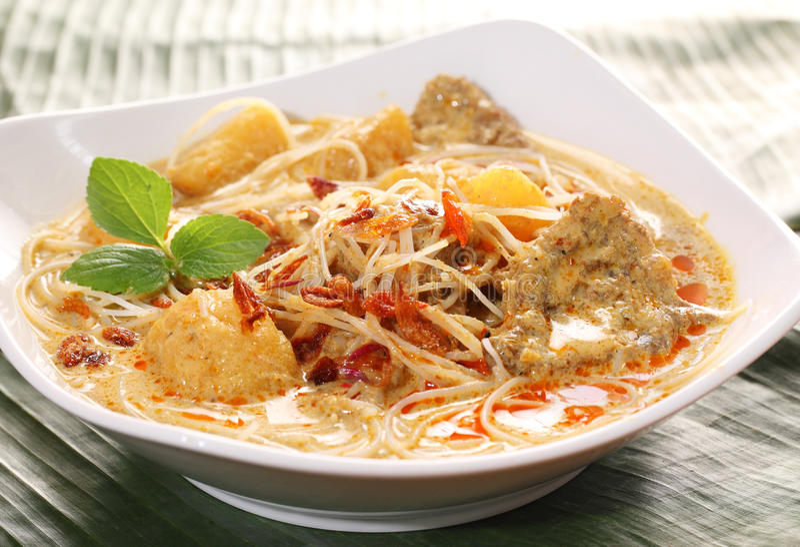 Tagliatella piccante asiatica del curry della noce di cocco immagini stock libere da diritti