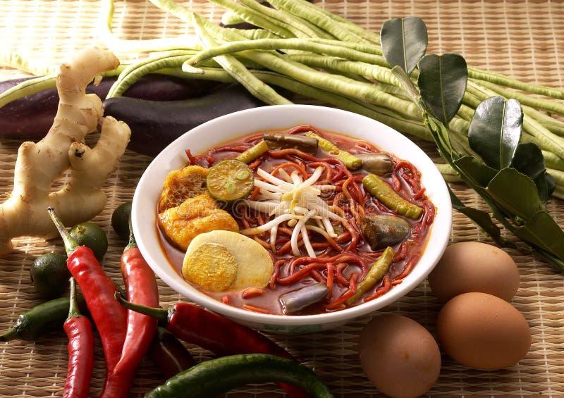 Tagliatelle del curry fotografia stock libera da diritti