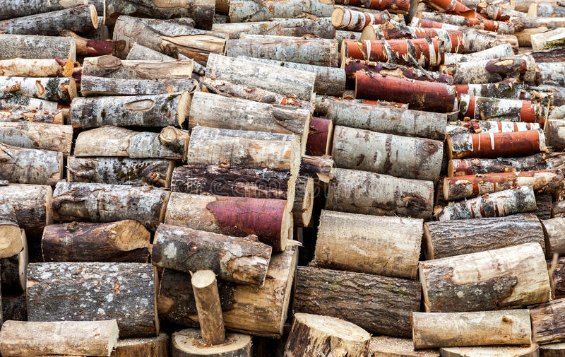 Tagliato ed impilato su legna da ardere asciutta immagine stock libera da diritti