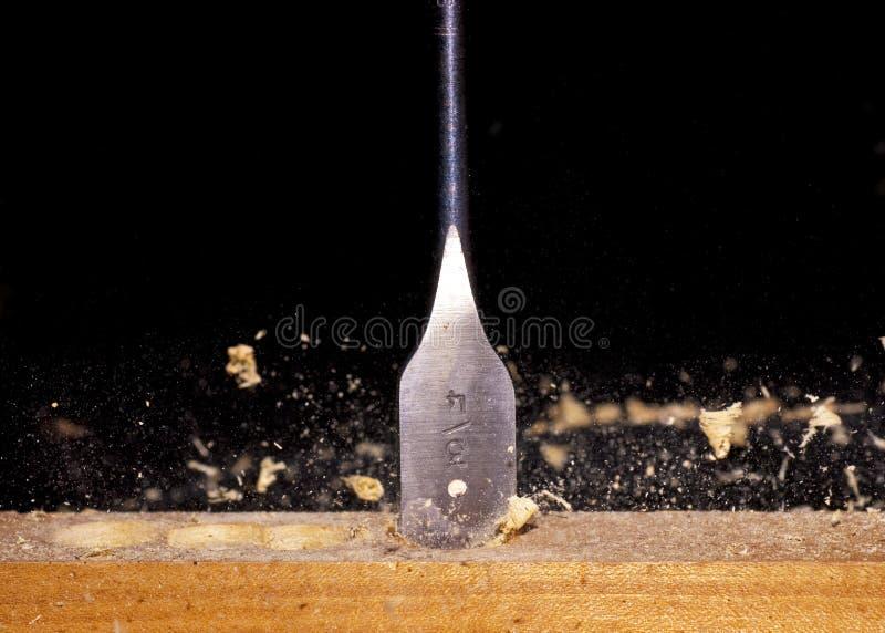 Taglio del bit di trivello attraverso il legno immagini stock libere da diritti