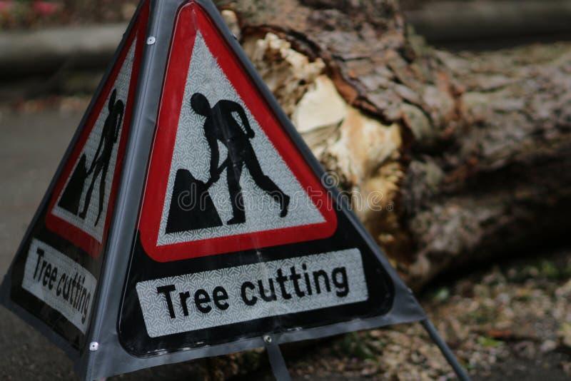 Taglio dell'albero del segnale di pericolo e l'albero tagliato nel fondo al parco, fotografato con profondità di campo bassa fotografie stock libere da diritti