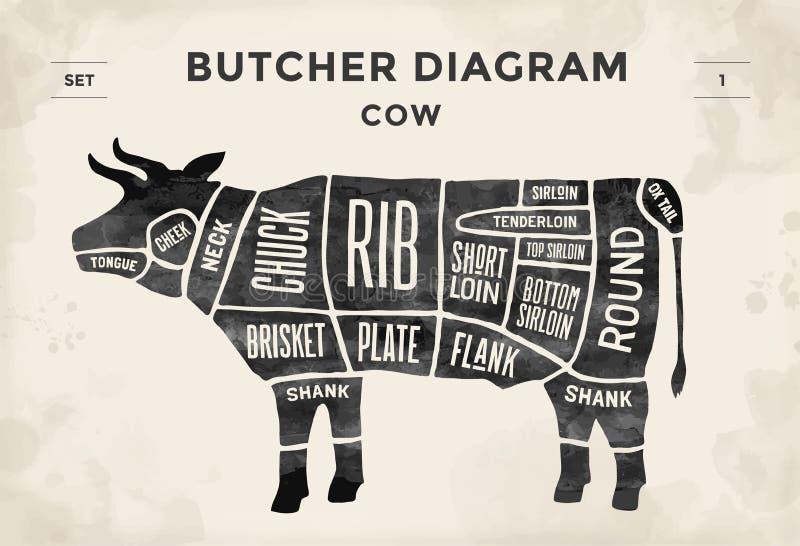 Taglio dell'insieme del manzo Diagramma del macellaio del manifesto - mucca Disegnato a mano tipografico d'annata Illustrazione d illustrazione vettoriale