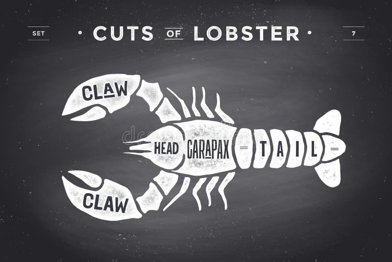 Taglio dell'insieme della carne Diagramma del macellaio del manifesto e schema - aragosta royalty illustrazione gratis