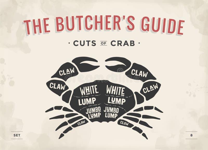 Taglio dell'insieme della carne Diagramma del macellaio del manifesto e schema - granchio illustrazione vettoriale