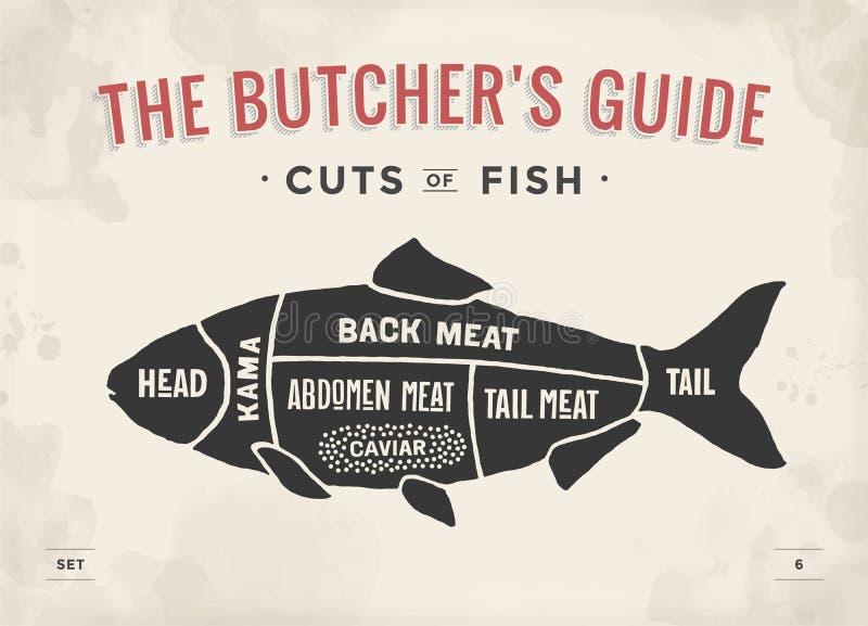 Taglio dell'insieme della carne Diagramma del macellaio del manifesto e schema - pesce Disegnato a mano tipografico d'annata royalty illustrazione gratis