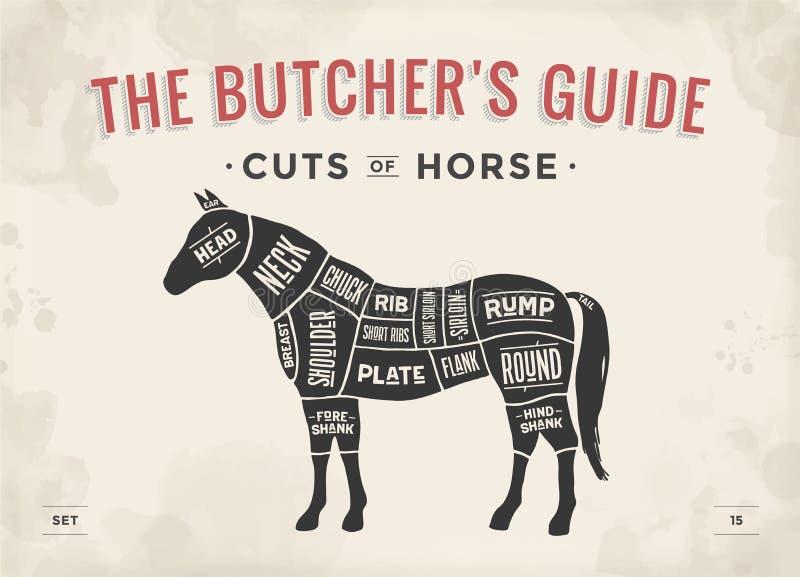 Taglio dell'insieme della carne Diagramma del macellaio del manifesto, schema - cavallo illustrazione di stock