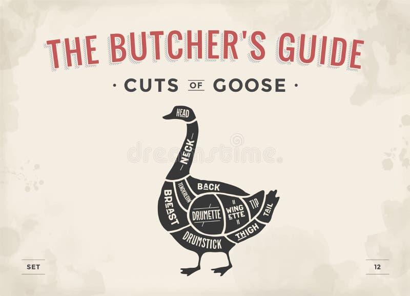 Taglio dell'insieme della carne Diagramma del macellaio del manifesto, schema - oca illustrazione vettoriale