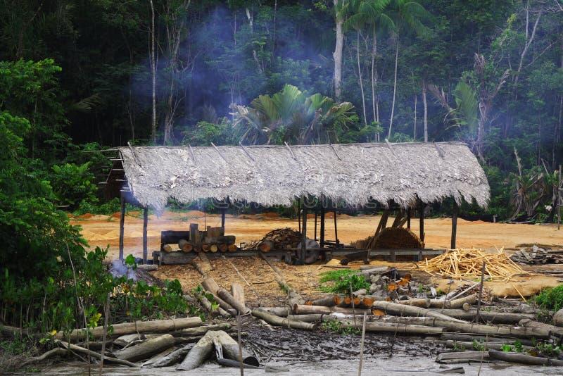 Taglio della foresta pluviale fotografia stock