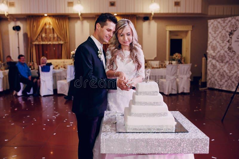 Taglio della torta nunziale immagine stock