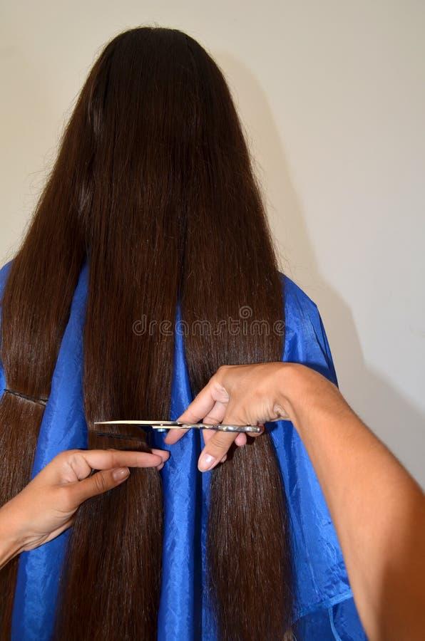Taglio di capelli su capelli realmente lunghi fotografia stock libera da diritti