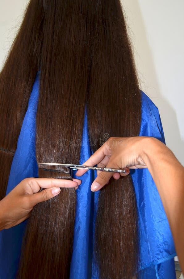 Taglio di capelli su capelli realmente lunghi immagine stock libera da diritti