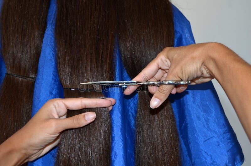 Taglio di capelli su capelli realmente lunghi immagini stock