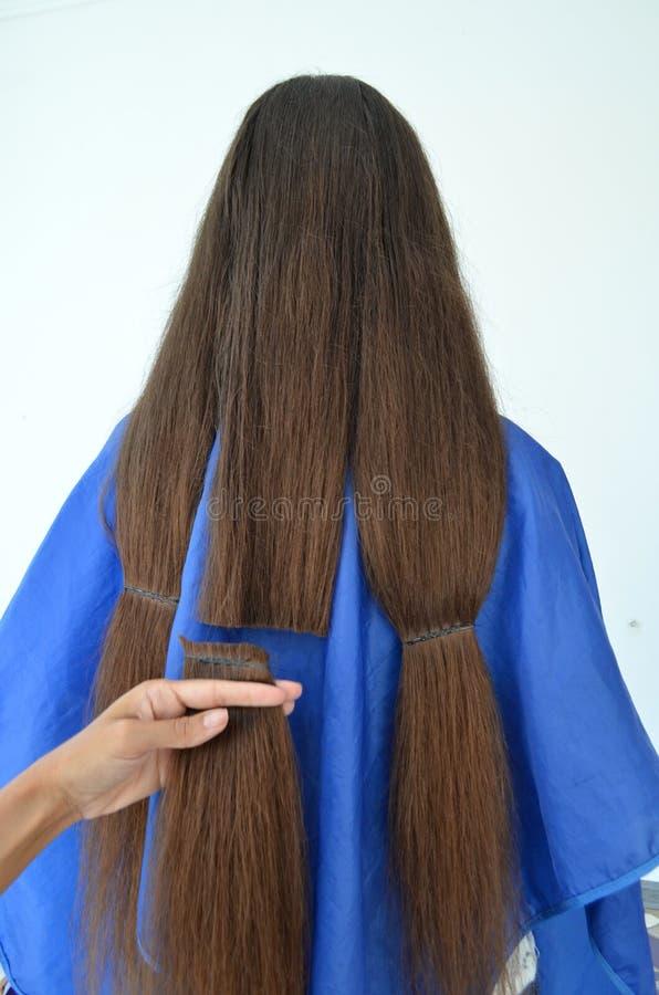 Taglio di capelli su capelli realmente lunghi fotografie stock libere da diritti