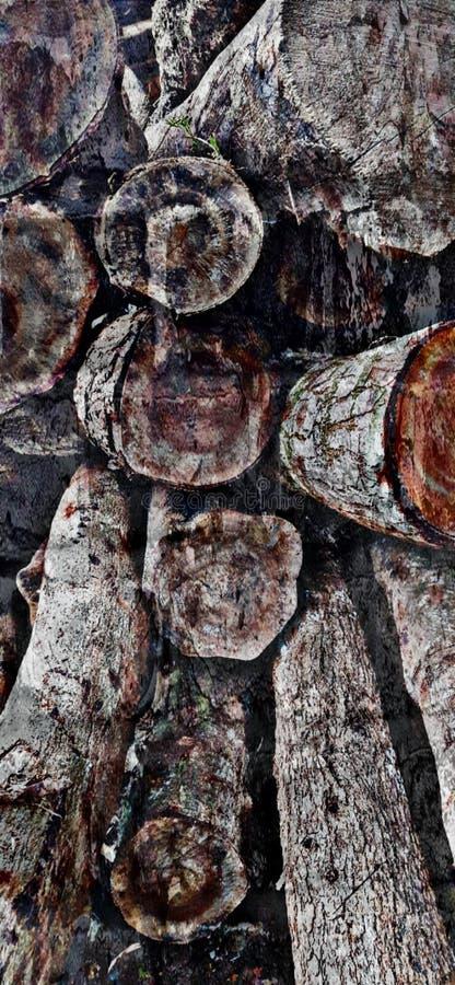 Taglio di legno del migliore albero immagine stock
