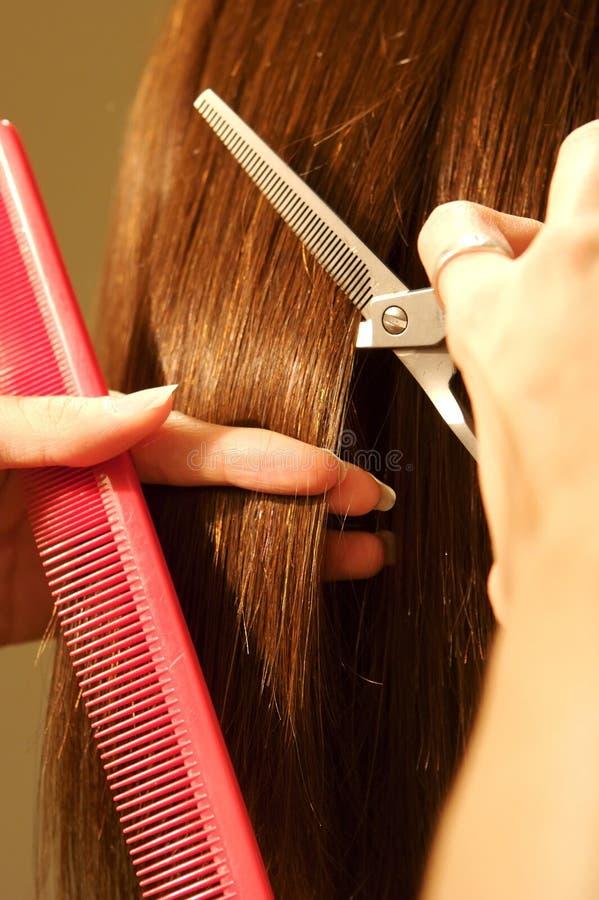 Taglio femminile dei capelli ad un salone immagini stock