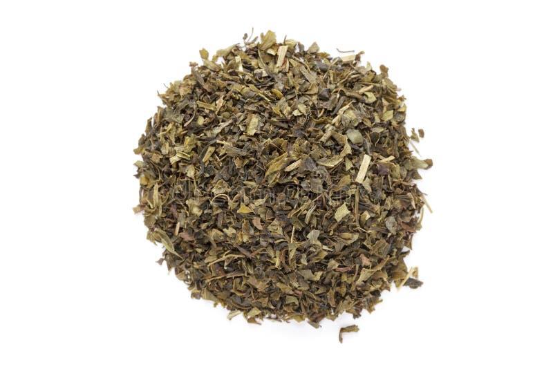 Taglio organico della bustina di tè del tè verde (camellia sinensis), foglie secche fotografia stock