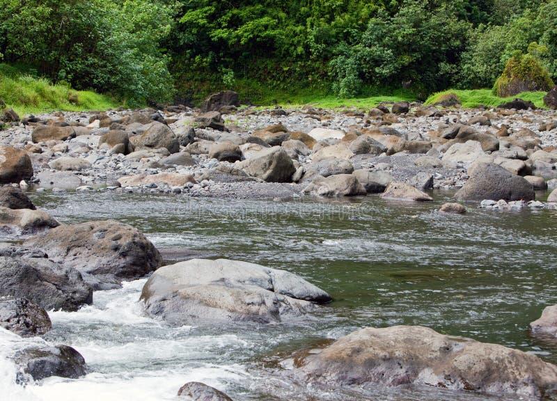 tahiti Fiume della montagna fotografia stock