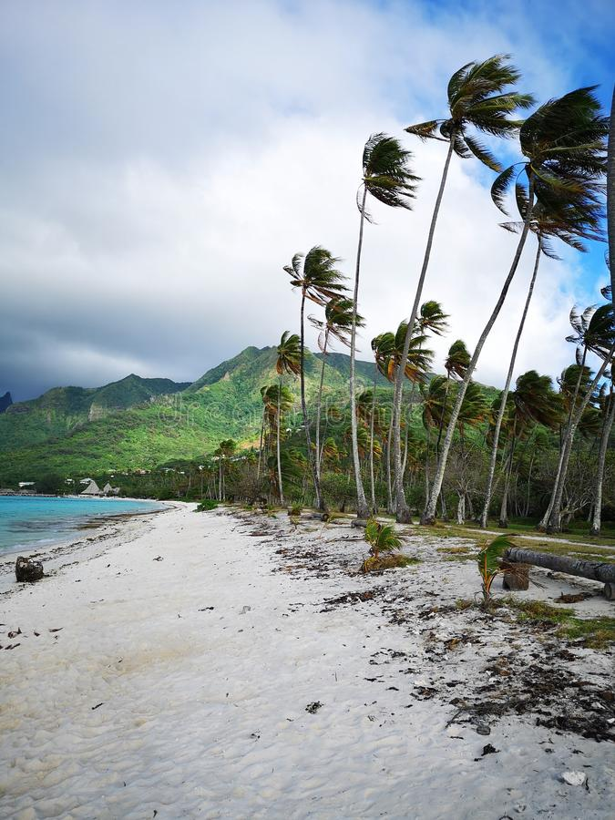 Tahiti. French Polynesia Bora Bora. French polynesia. , sky, vacation stock photo